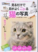 見るだけで目がよくニャる猫の写真