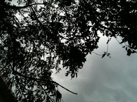 風雲急を……
