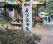 20061116momijidai