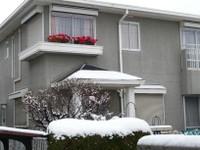 お向かいの家に積もる雪