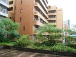 大阪の雨9