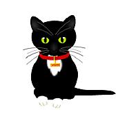 Blackkcat